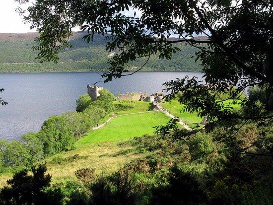 Urquhart Castle: Veduta tra la vegetazione