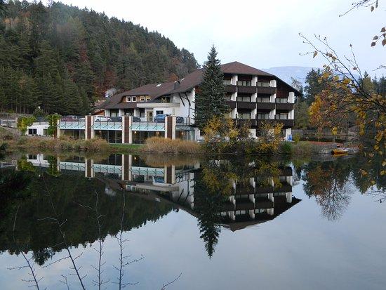 Hotel Am Wolfsgrubenersee: l'hotel visto dal lago