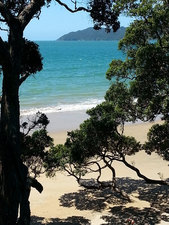 Mangonui, Nueva Zelanda: Short walk to Coopers Beach