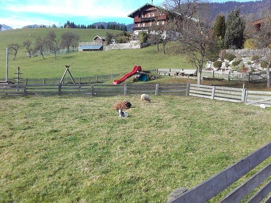 Thiersee, Austria: Spielplatz gegenüber des Hotels