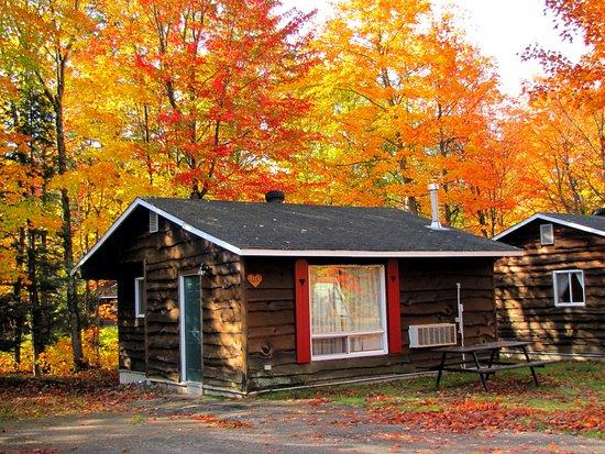 Sault Ste. Marie, Canada: Cabin