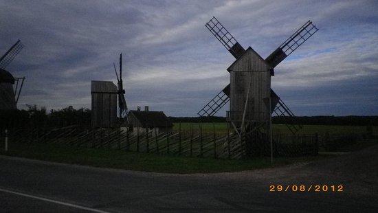 Saaremaa, Estonya: Kvarnar i Angla.