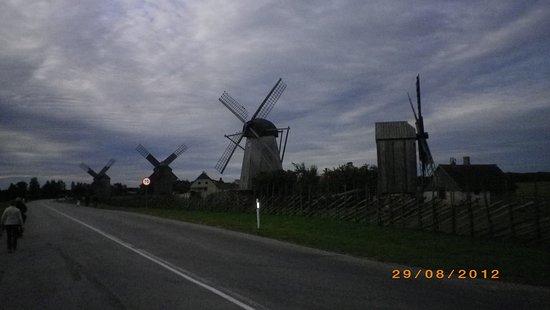 Saaremaa, Estonya: Angla Väderkvarnsby.