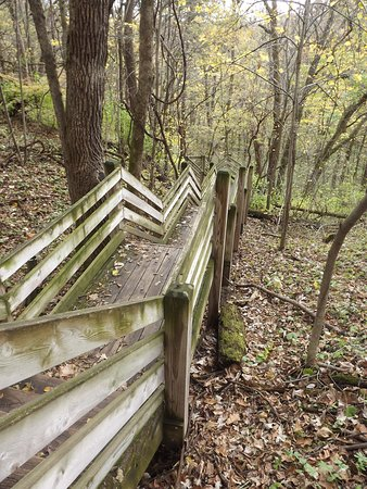Mount Morris, IL: Well preserved trails and safe/newer stairs to get to different levels of trails