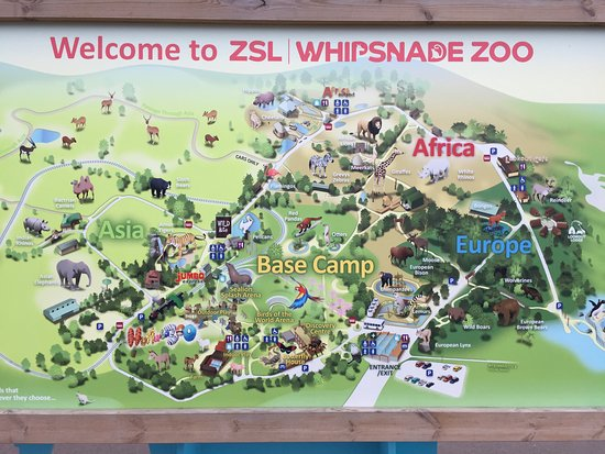 Zoo Map Picture of ZSL Whipsnade Zoo Dunstable TripAdvisor
