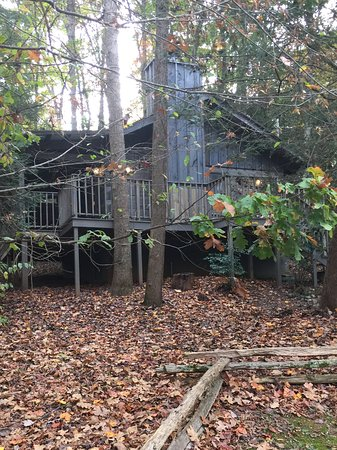 Dancing Bear Lodge: Meigs trail cabin