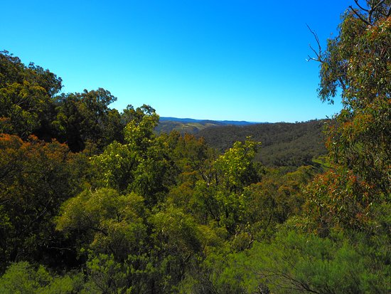Canyonleigh, Australien: Views