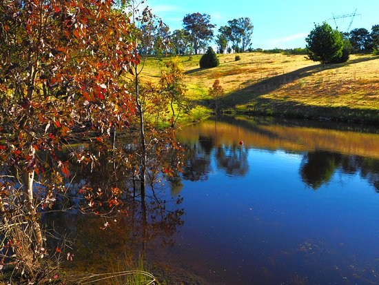 Canyonleigh, Australië: Property