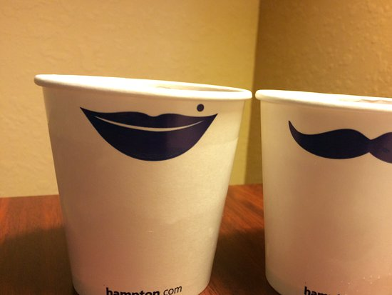 Hampton Inn Lagrange near Callaway Gardens: Love these cups