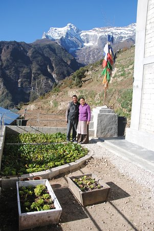 Innkeepers, kitchen garden, and Kwongde in background - Picture of ...