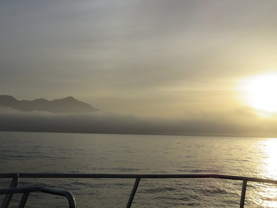 Hermanus, Republika Południowej Afryki: Early Morning on route to find the whales
