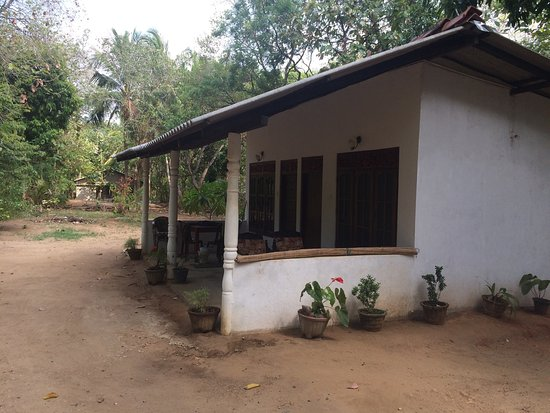 Relax Guesthouse : photo1.jpg