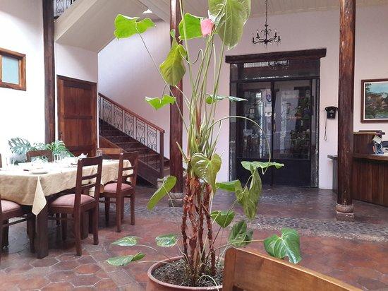Casa Ordonez: 20161102_080403_large.jpg