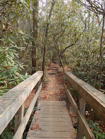Cashiers, NC: The bridge along the trail