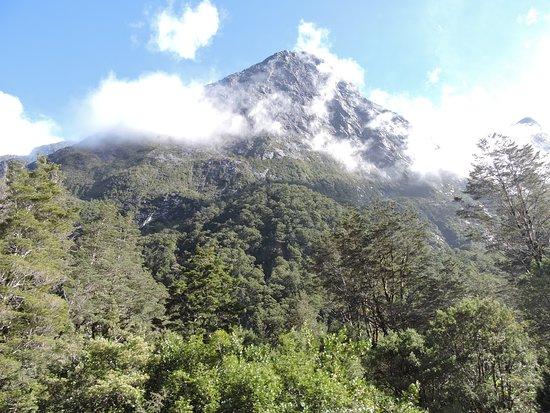 Fiordland National Park (Te Wahipounamu): montañas