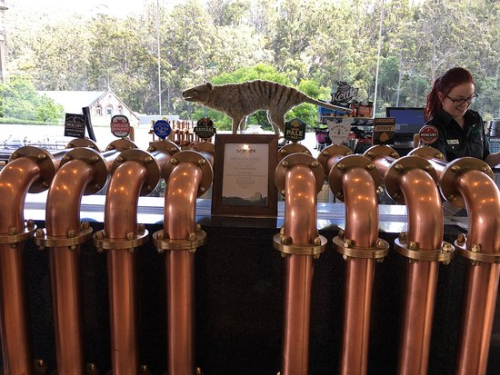 Cascade Brewery: photo6.jpg