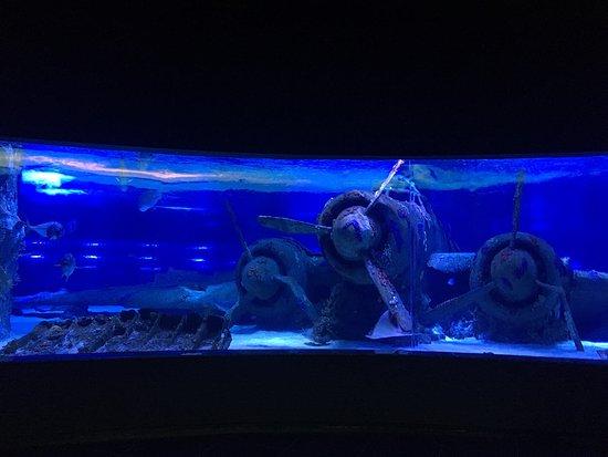 Finike, Turkey: Antalya akvaryum