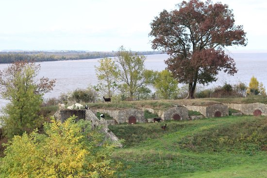 Blaye, Francja: photo2.jpg
