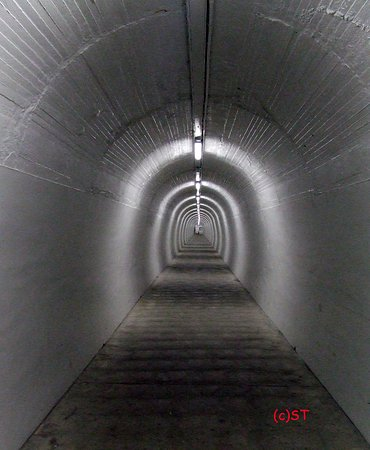Whanganui, New Zealand: 213m long tunnel to connect Anzac Parade