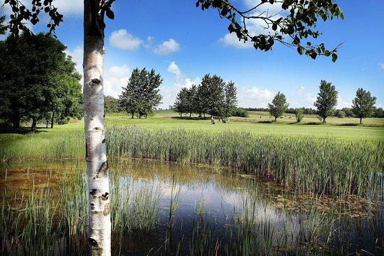 Skive, Denmark: Naturskøn bane med gode udfordringer