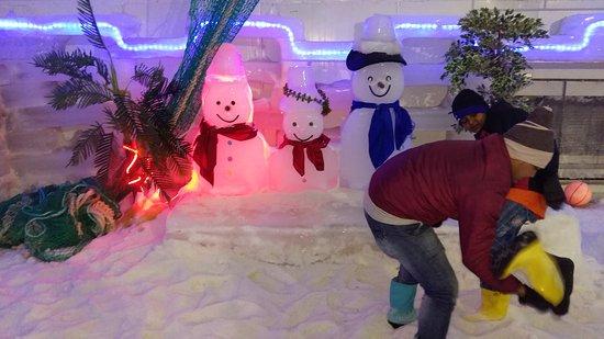 Snow Park: 20161108_135558_large.jpg