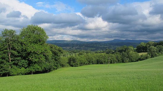 Llandovery, UK: View from the Lounge Room