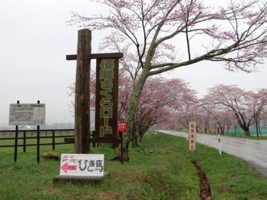 Urakawa-cho Photo