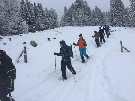 Balderschwang, Alemania: Täglich geführte Schneeschutouren