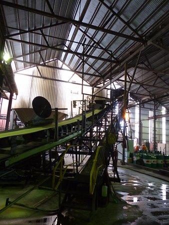 Tully, أستراليا: Conveyor