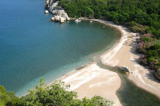 Bayrams Tree Houses: beach
