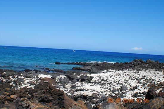 Makalawena/Pu'u Ali'i: nice lava and coral beach