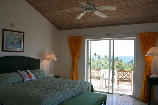 Stella Maris Resort Club: Ocean View Room