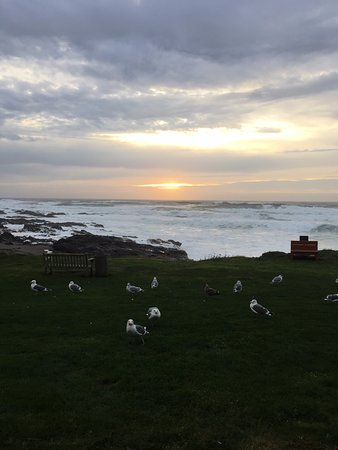 Adobe Resort: Almost Sunset in Yachats