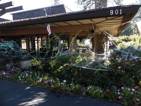 BEST WESTERN Station House Inn: Ready for Halloween.