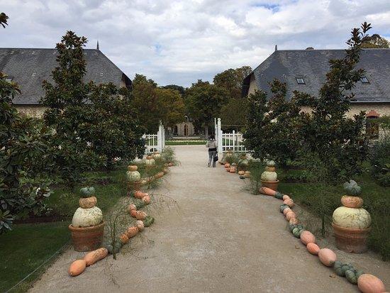 Centro, França: Chateau de Chaumont