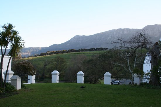 Constantia, Güney Afrika: View of the grounds, looking up toward the mountains.