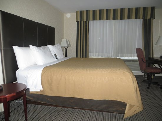 Comfort Inn & Suites: Standard King bed