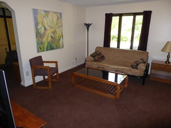 Mountain Sports Inn: Standard Suite Living Room