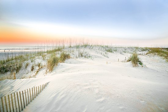 Ponte Vedra Beach Dunes Picture Of