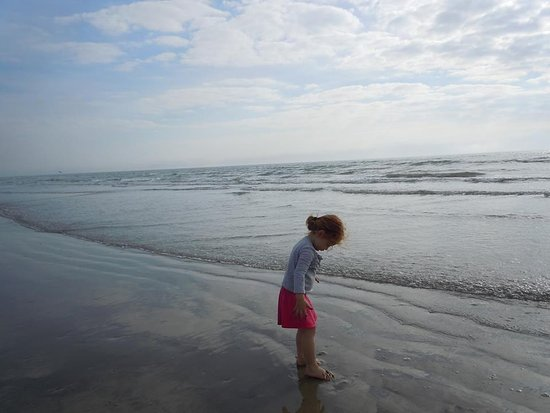 Galveston Island Rv Resort Reviews