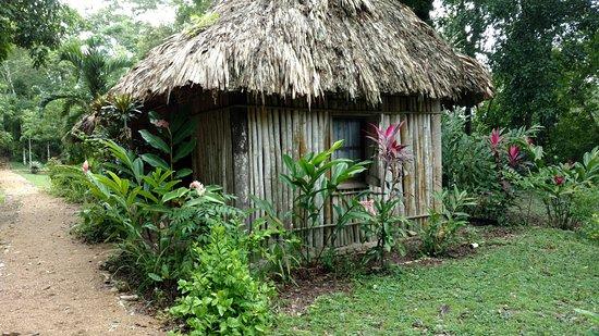 San Jose Succotz, Belize: Clarissa Falls Resort
