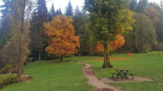North Vancouver, Kanada: Beautiful colors of autumn