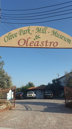 Oleastro Olive Park and Museum: An entrance to the museum