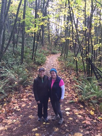 Sehome Hill Arboretum: Jersey St trail .26 mile
