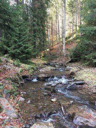Cascada Varciorog