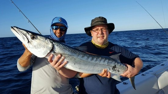 Clearwater kingfish picture of fisheye sportfishing for Fishing clearwater fl