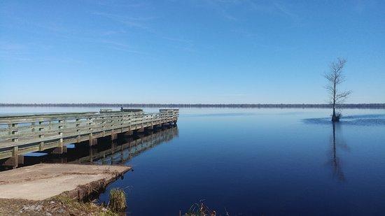 Great Dismal Swamp National Wildlife Refuge: Lake Drummond