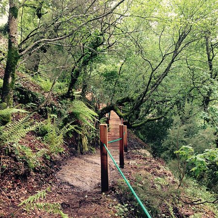 Eco-Park de Oussias: Passadiço