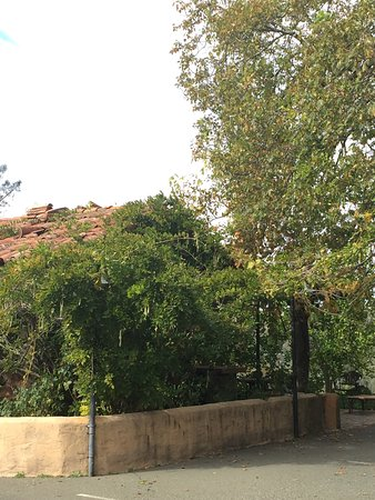 Kuleto Estate: photo2.jpg