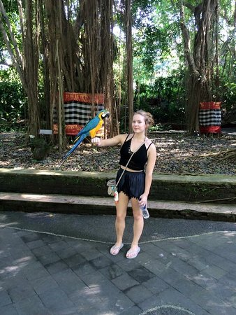 Bali Safari & Marine Park: photo1.jpg